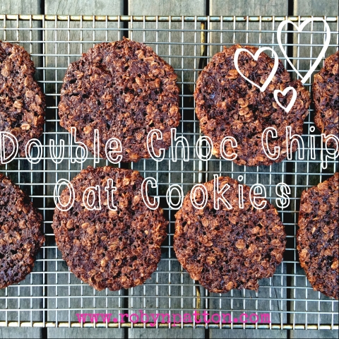 Double Choc Chip Oat Cookies