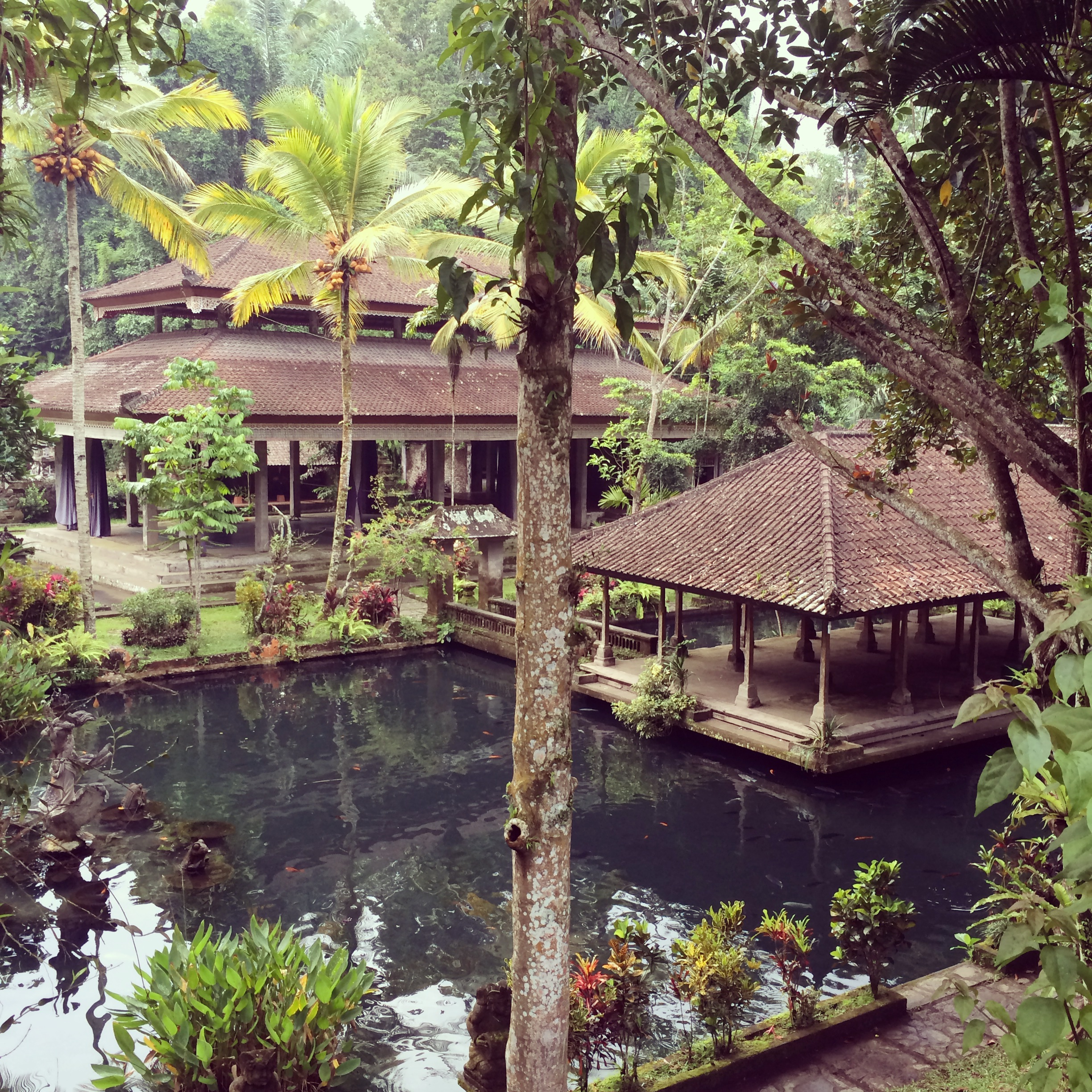 Where to eat, shop, heal and stay in Ubud Bali